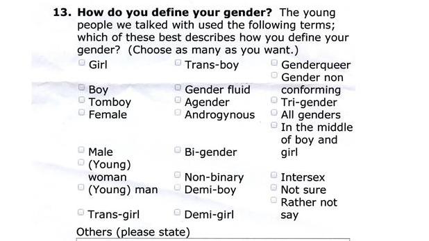 Der er 23 valgmuligheder, når eleverne skal definere deres køn, og de må gerne sætte flere krydser.