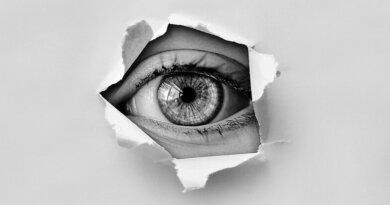 Fagforbund forsvarer »normdetektivkursus«: »Det handler ikke om stikkervirksomhed«